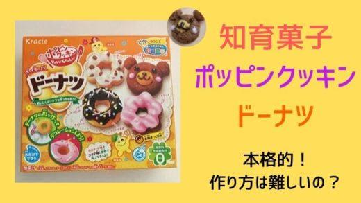 【知育菓子】ポッピンクッキンドーナツの作り方は難しい?大人がハマる楽しさ!