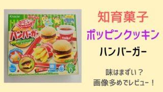 【知育菓子】ポッピンクッキンハンバーガーの味はまずい?作り方や食べた感想!
