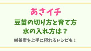【豆苗】切り方や育て方と置く場所は?栄養素を摂るレシピも!!