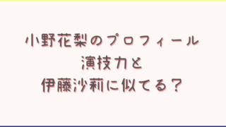 小野花梨の演技力は元子役で高い?伊藤沙莉に目が似てる?