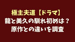 【極主夫道】美久との出会いはどこ?ドラマと原作マンガとの違いを調査!