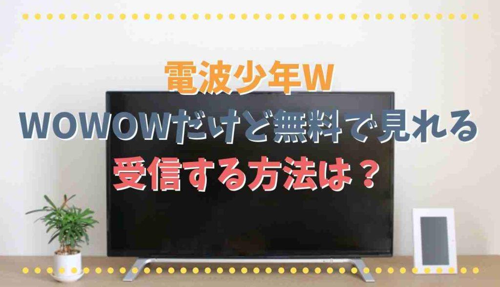電波少年WをWOWOWで受信する方法