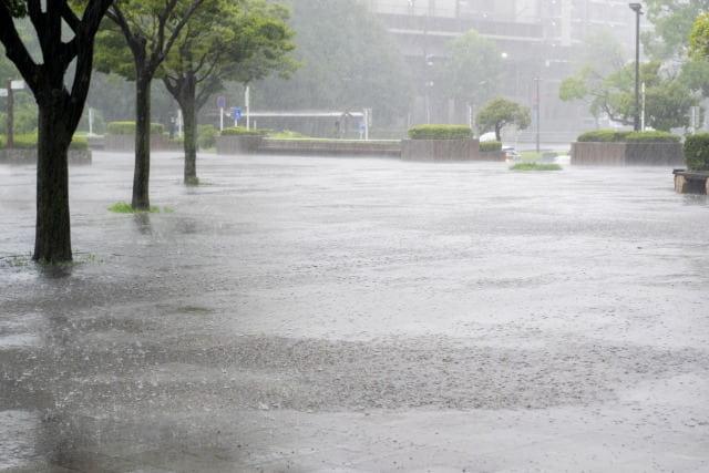 通り雨の特徴