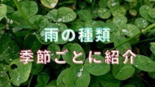 雨の種類は季節ごとに違う!春夏秋冬に分けて20選紹介