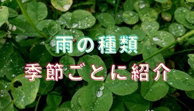 雨の種類を季節ごとに紹介