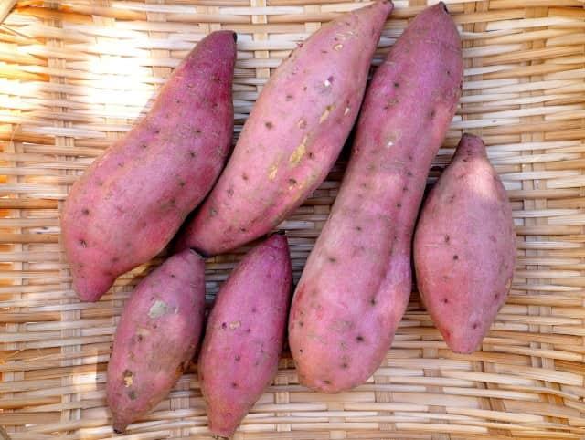 スーパーの焼き芋が甘いのはさつまいもの種類