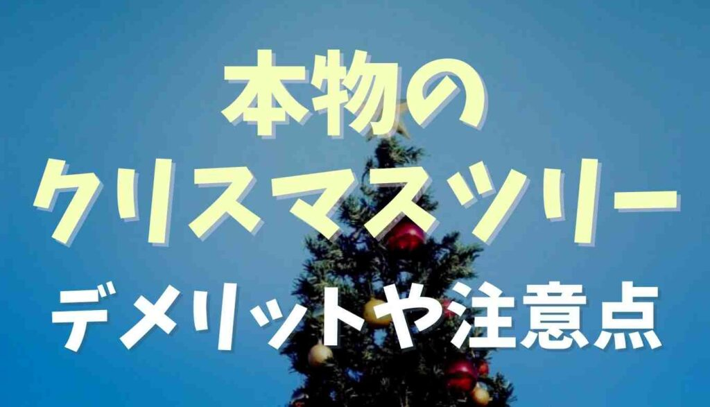 クリスマスツリーに本物を使うデメリットは?注意点も